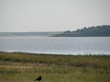 Озеро Медвежье - Курганская область, Петуховский район - 014