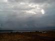 Озеро Медвежье - Курганская область, Петуховский район - 019