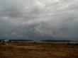 Озеро Медвежье - Курганская область, Петуховский район - 021