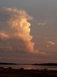Озеро Медвежье - Курганская область, Петуховский район - 023