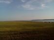 Озеро Медвежье - Курганская область, Петуховский район - 028