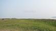 Озеро Медвежье, Курганская область - отдых дикарями - 005