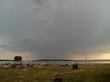 База отдыха Медвежий остров (Озеро Медвежье, Курганская область) - 004