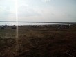 База отдыха Медвежий остров (Озеро Медвежье, Курганская область) - 012
