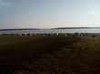 База отдыха Медвежий остров (Озеро Медвежье, Курганская область) - 017