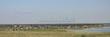 Турбаза «Медвежий остров» (озеро Медвежье, Курганская область, Петуховский район), палаточный лагерь, кемпинг - Фото 103