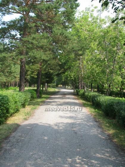 Санаторий «Озеро Медвежье» - 017 - Лечебный фактор курорта: свежий сосновый воздух