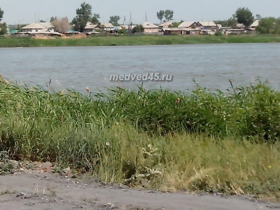 Село Новое Ильинское (Курганская область) - 002 - Вид с пресного озера Прудок