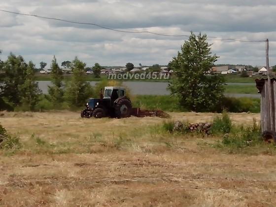 Село Новое Ильинское (Курганская область) - 003 - Сельскохозяйственные работы