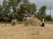Населенный пункт - село Новое Ильинское (Новоильинка) (Озеро Медвежье, Петуховский район, Курганская область) - 004