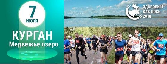 Чемпионат «Здоровый как лось» (курганский этап - озеро Медвежье, Курганская область)