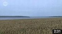 Видео о Медвежьем озере 504: Озеро Медвежье (Петуховский район Курганской области) - medved45.ru